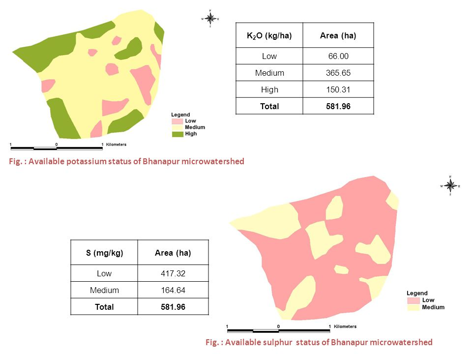Fig. : Available potassium status of Bhanapur microwatershed