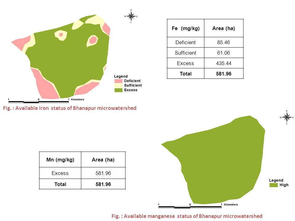 Fig. : Available iron status of Bhanapur microwatershed