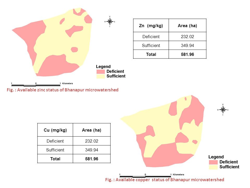 Fig. : Available zinc status of Bhanapur microwatershed