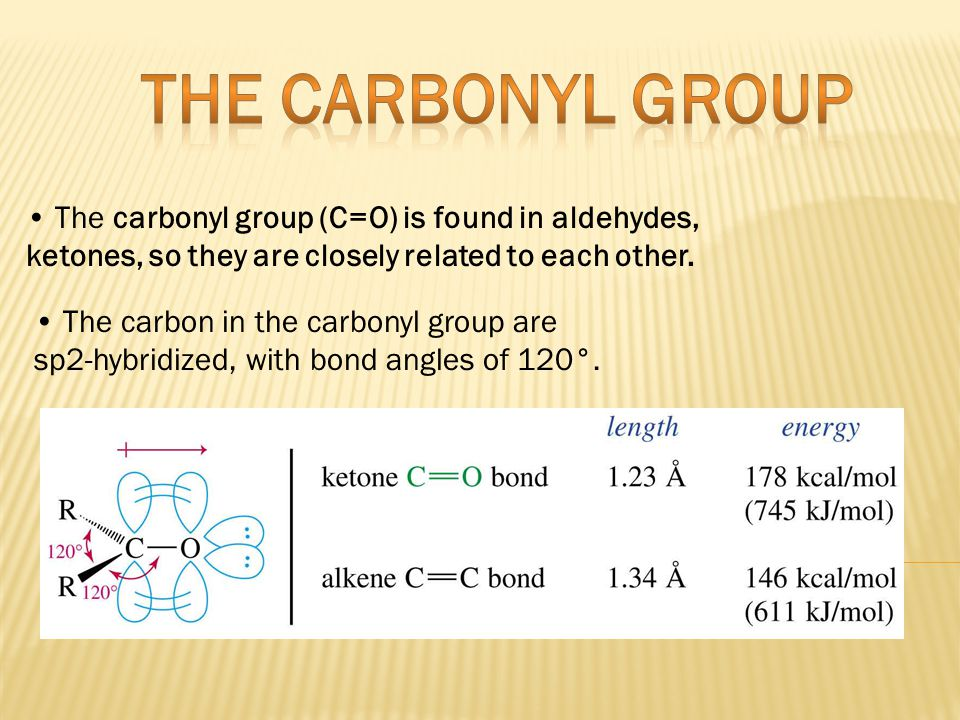 THE CARBONYL GROUP • The carbonyl group (C=O) is found in aldehydes,