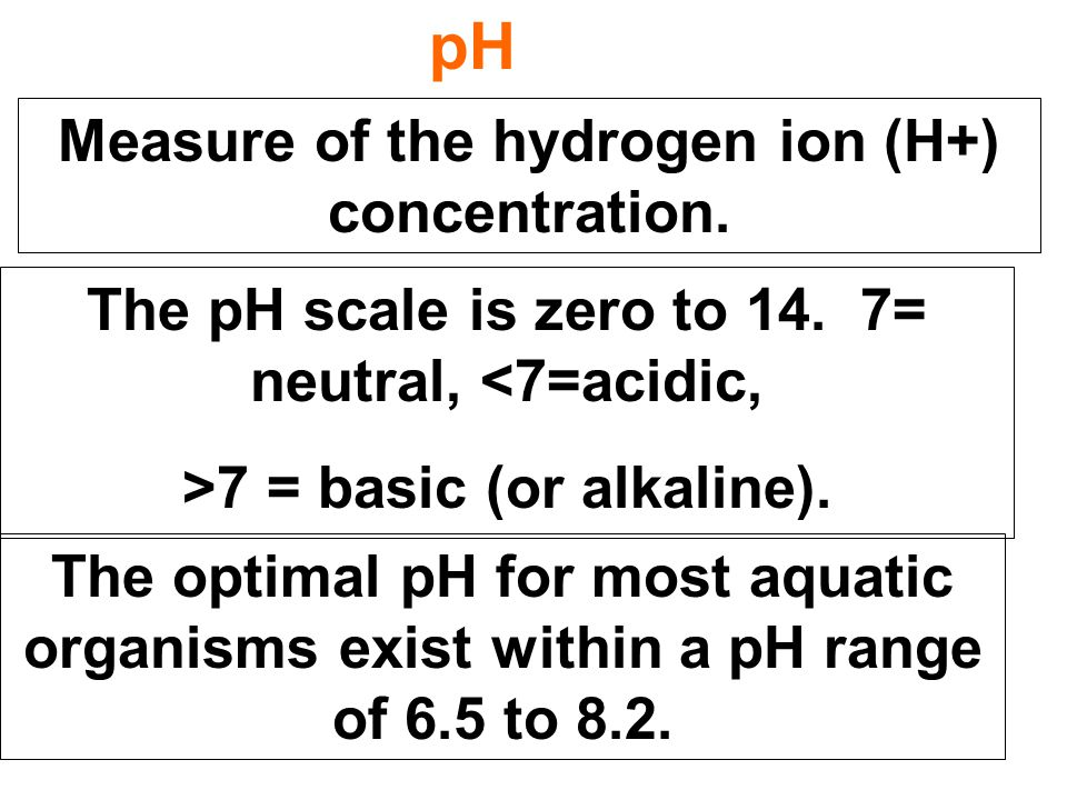 pH Measure of the hydrogen ion (H+) concentration.