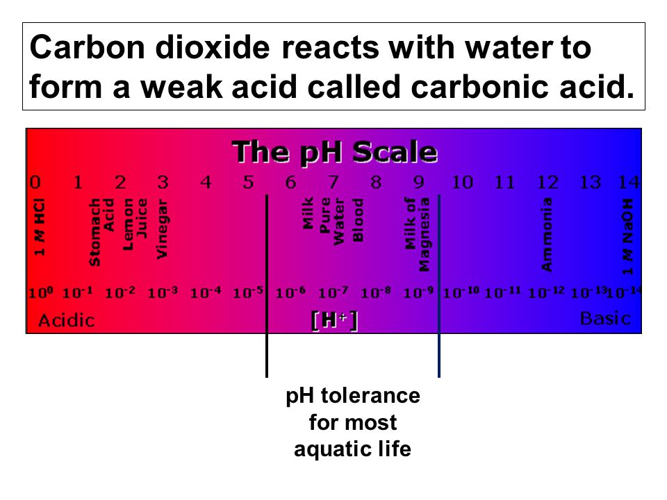 pH tolerance for most aquatic life