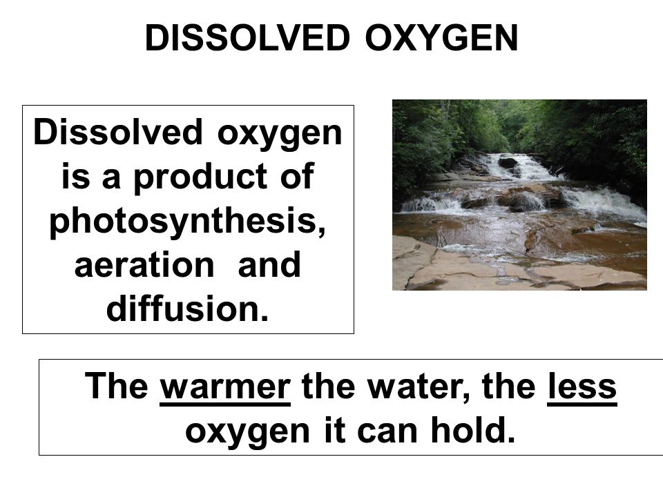The warmer the water, the less oxygen it can hold.