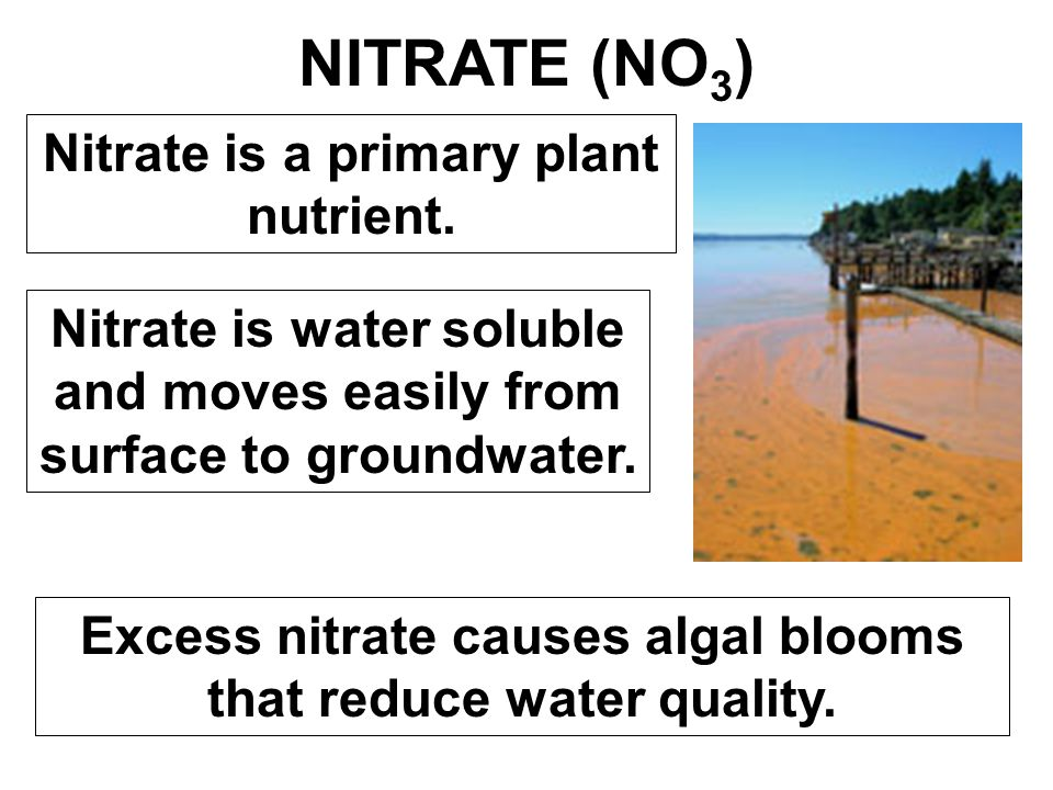 NITRATE (NO3) Nitrate is a primary plant nutrient.