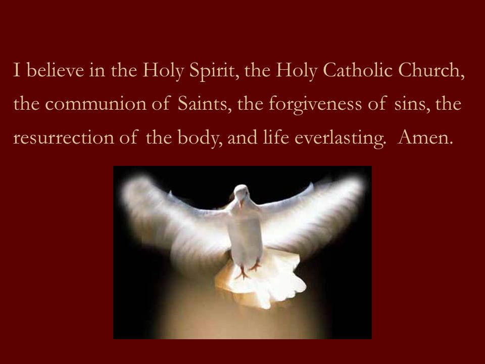 I believe in the Holy Spirit, the Holy Catholic Church, the communion of Saints, the forgiveness of sins, the resurrection of the body, and life everlasting.