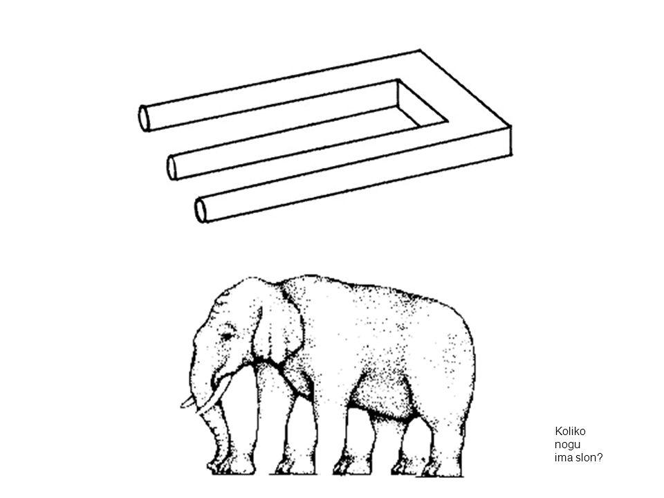 Koliko nogu ima slon