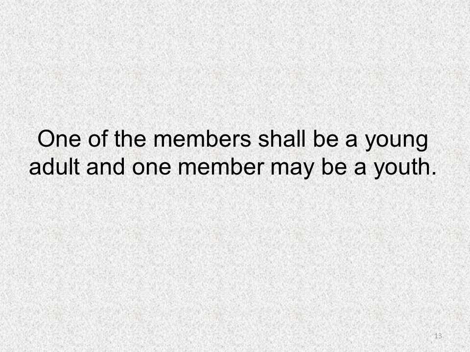 One of the members shall be a young adult and one member may be a youth.
