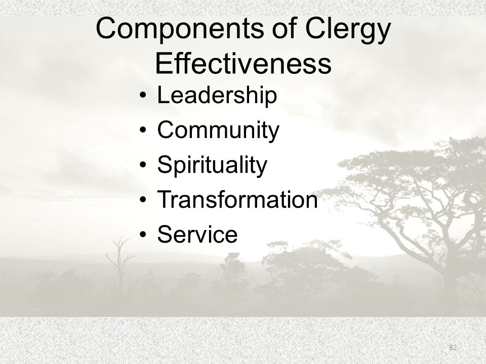 Components of Clergy Effectiveness