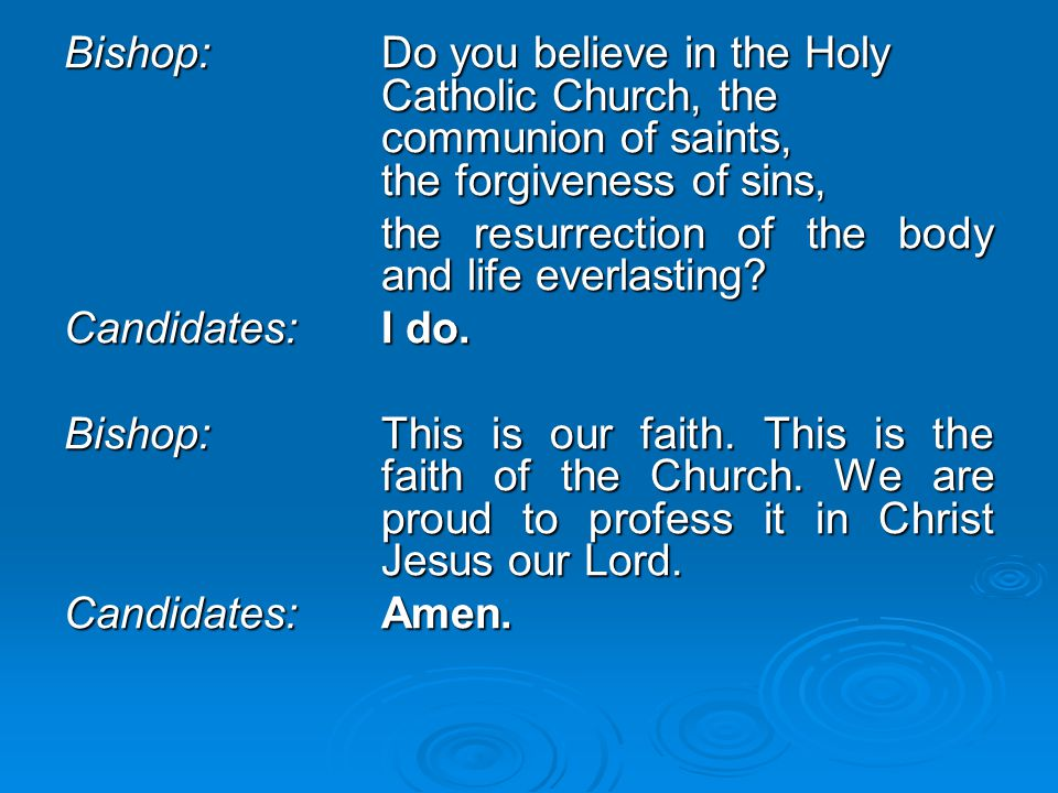 Bishop:. Do you believe in the Holy. Catholic Church, the