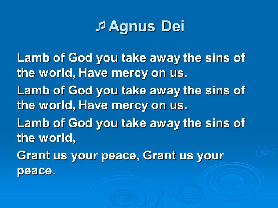 Agnus Dei Lamb of God you take away the sins of the world, Have mercy on us. Lamb of God you take away the sins of the world,