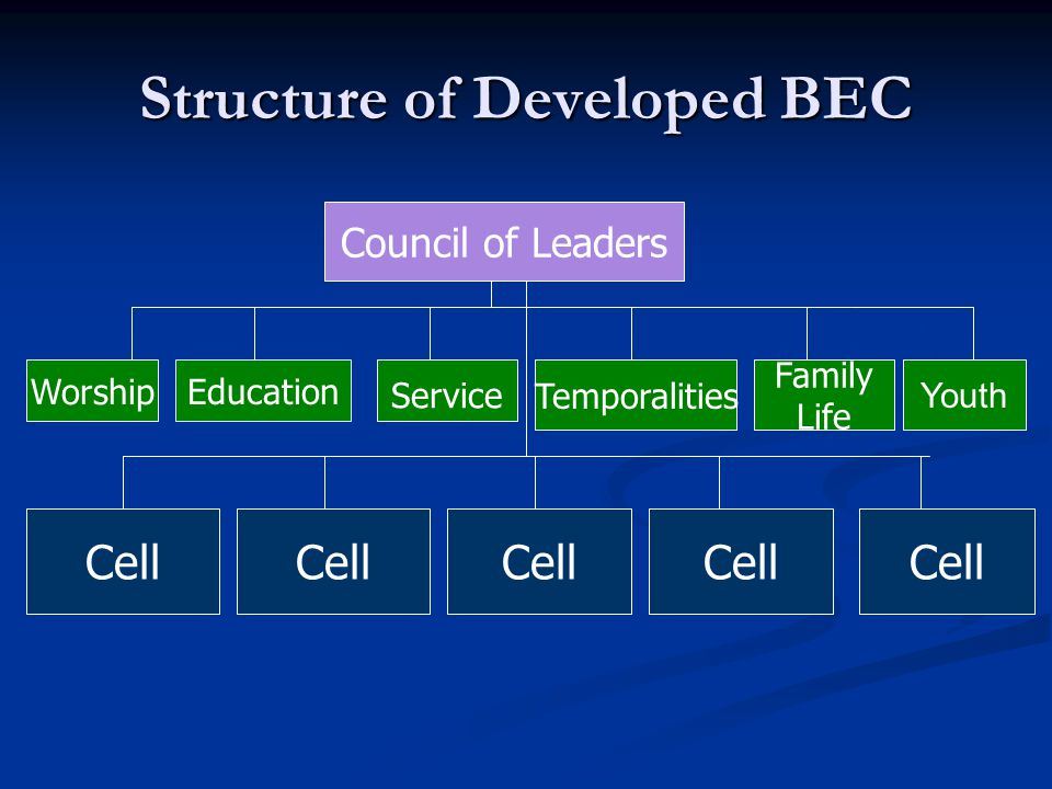 Structure of Developed BEC