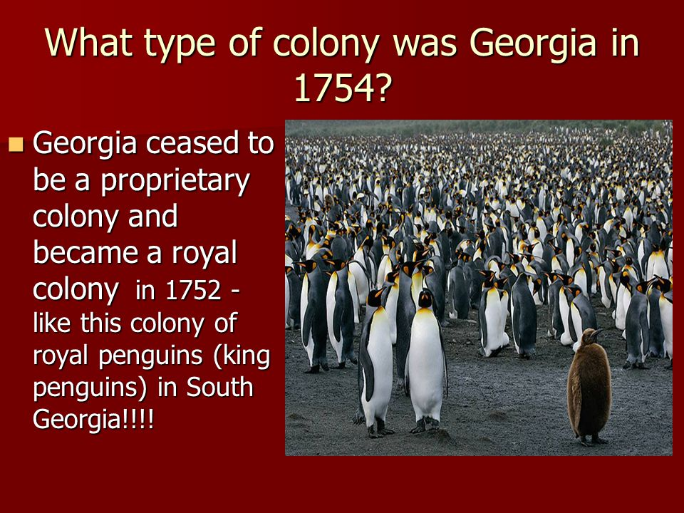 What type of colony was Georgia in 1754