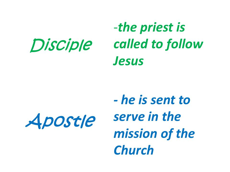 Apostle Disciple the priest is called to follow Jesus