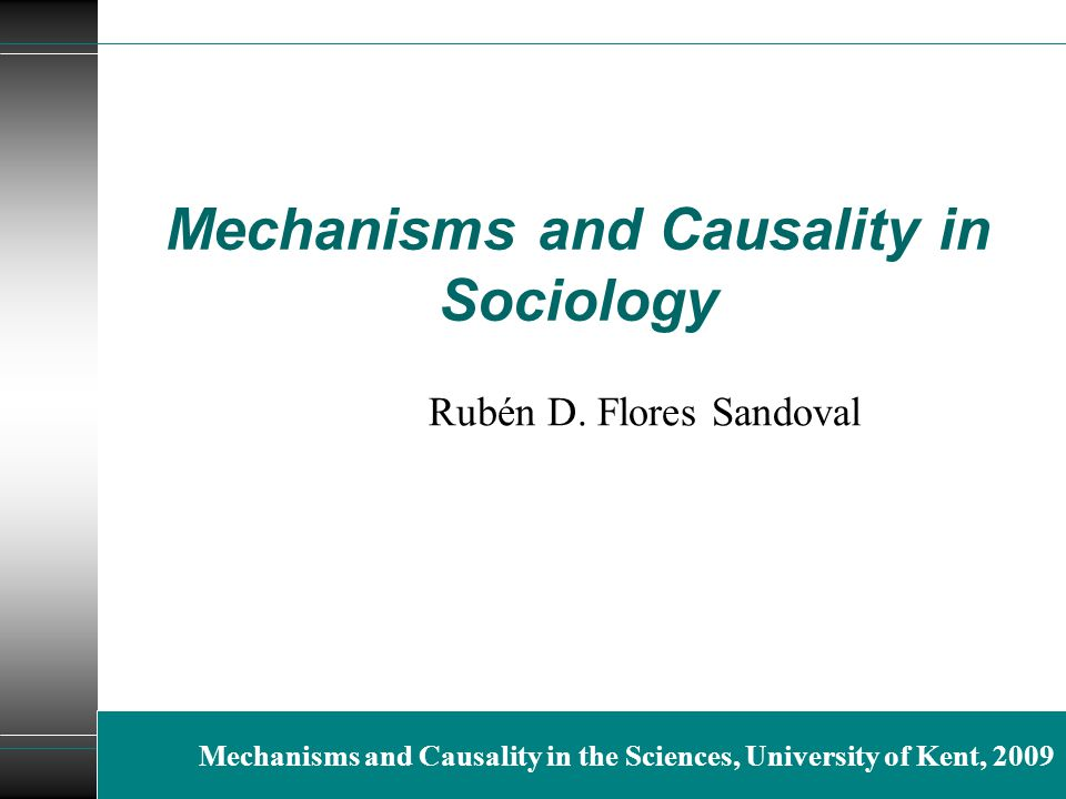 Mechanisms and Causality in Sociology