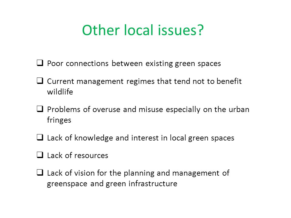 Other local issues Poor connections between existing green spaces