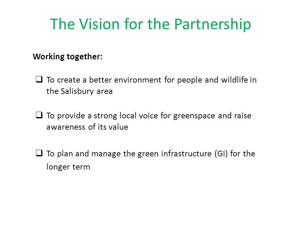 The Vision for the Partnership