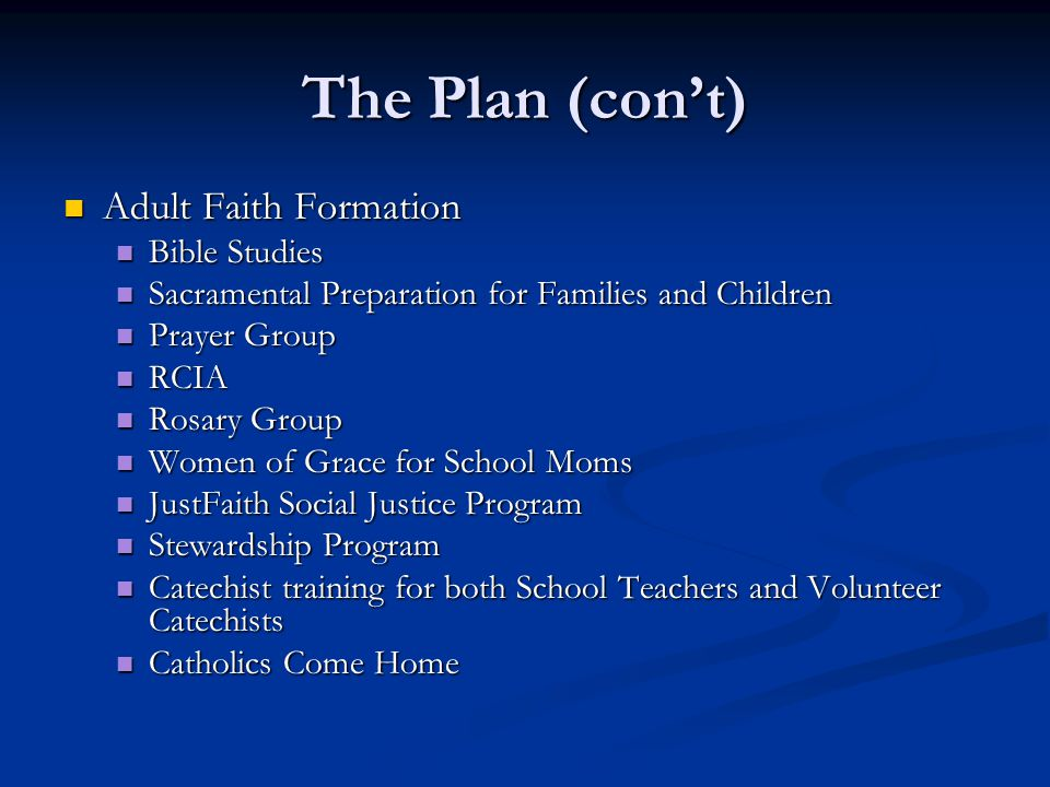 The Plan (con't) Adult Faith Formation Bible Studies