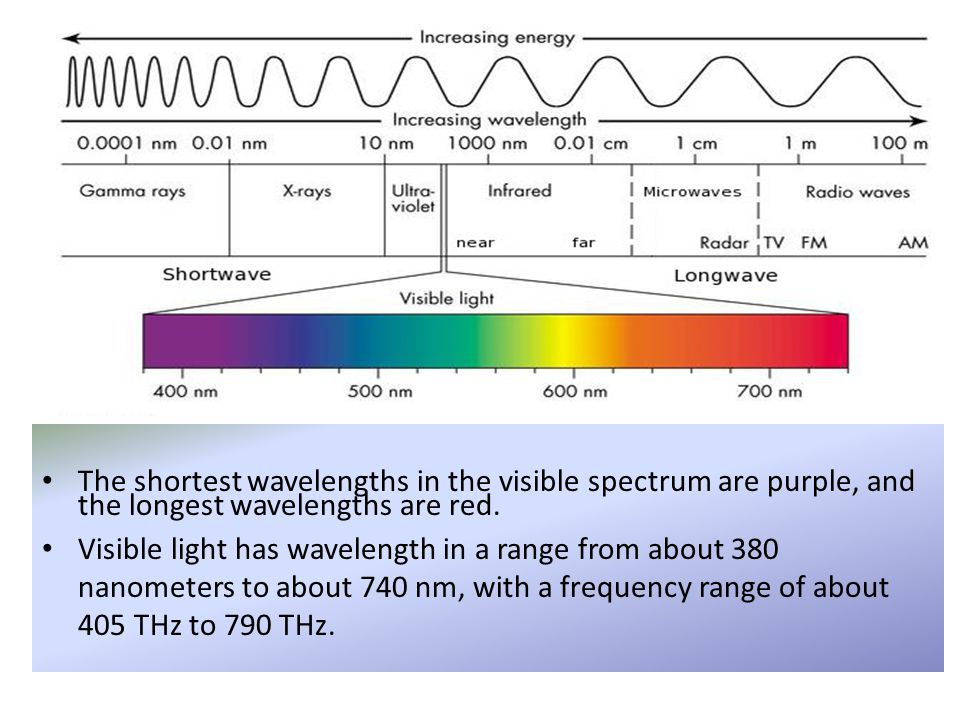 The shortest wavelengths in the visible spectrum are purple, and the longest wavelengths are red.