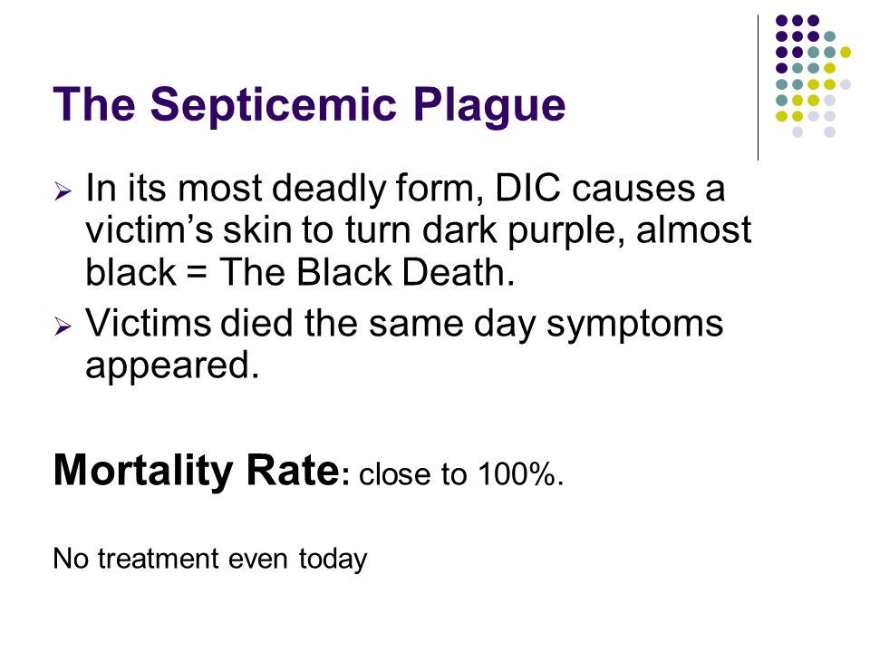 The Septicemic Plague Mortality Rate: close to 100%.