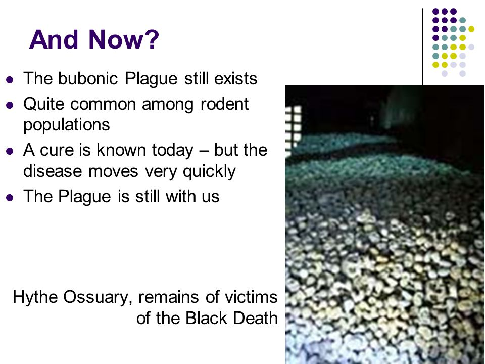 And Now The bubonic Plague still exists
