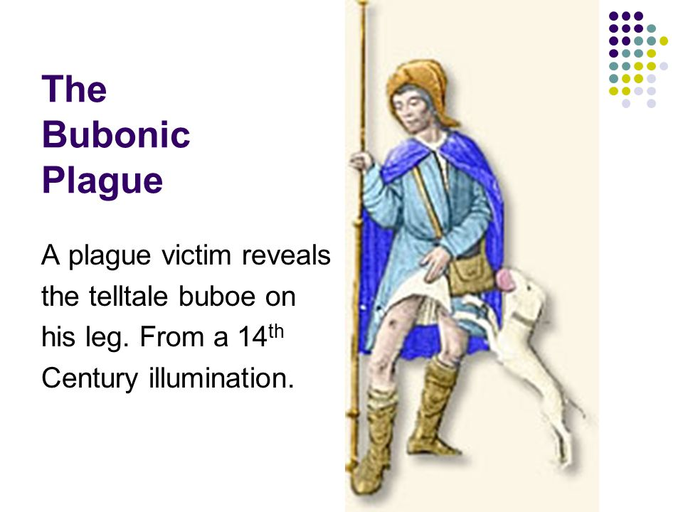 The Bubonic Plague A plague victim reveals the telltale buboe on