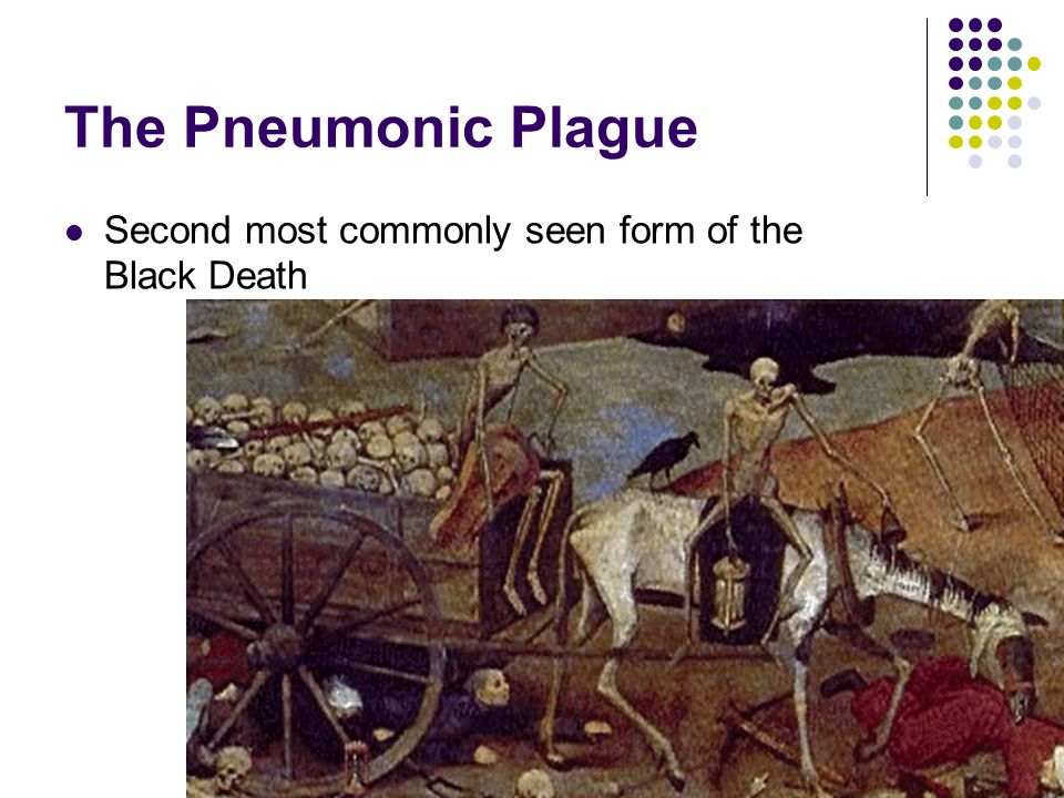The Pneumonic Plague Second most commonly seen form of the Black Death
