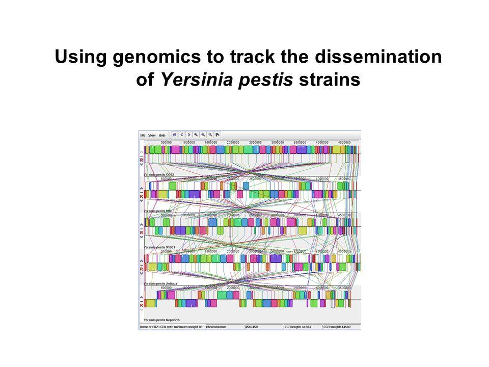 Using genomics to track the dissemination of Yersinia pestis strains