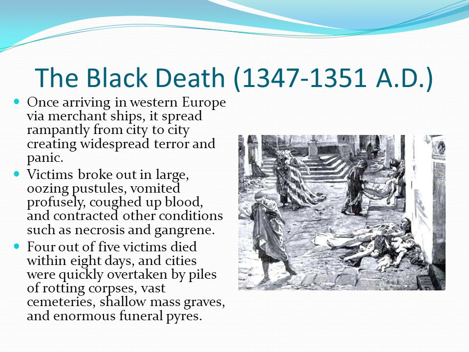 a description of the black death in wiping out the population of europe The black death started to wreak havoc in europe and the society came unprepared to the pandemics in such a situation, religion, which was the main source of salvation for people, still played an important part in the life of people and explanation of the disease.