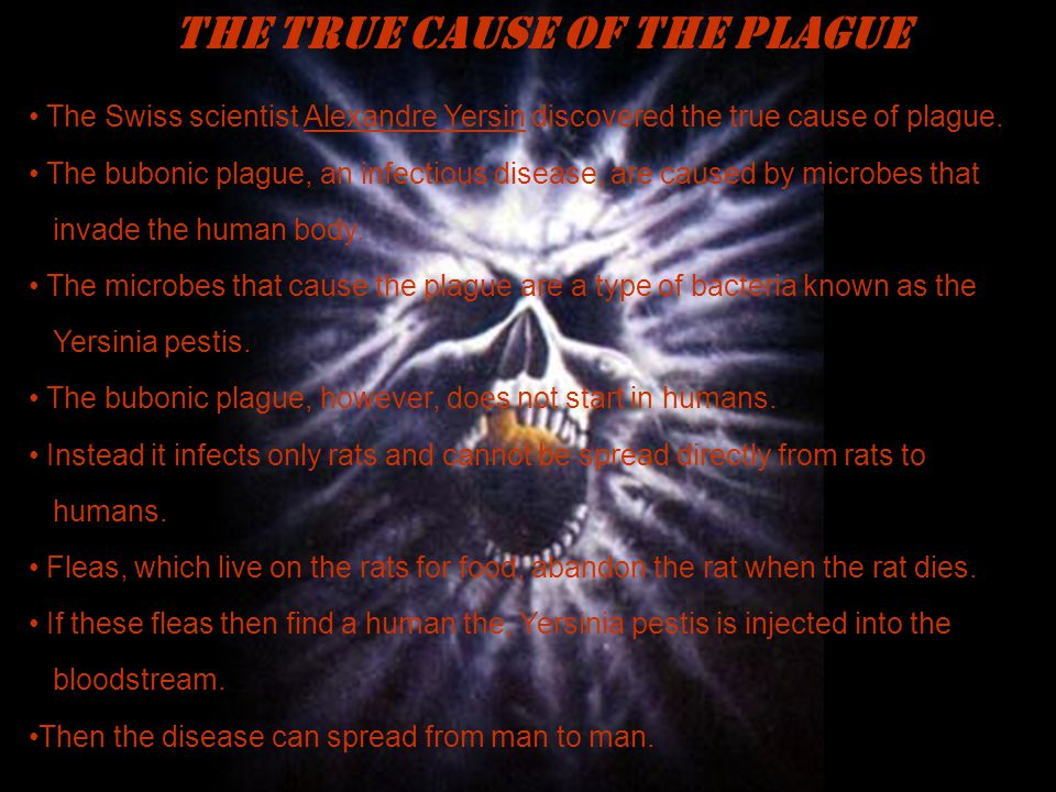 THE TRUE CAUSE OF THE PLAGUE