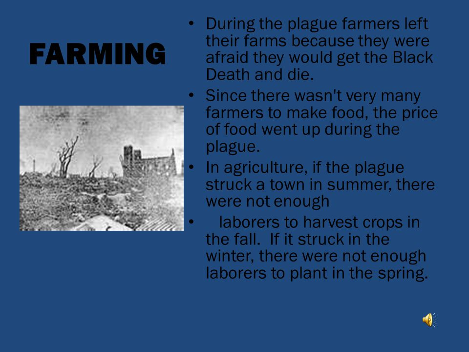 FARMING During the plague farmers left their farms because they were afraid they would get the Black Death and die.