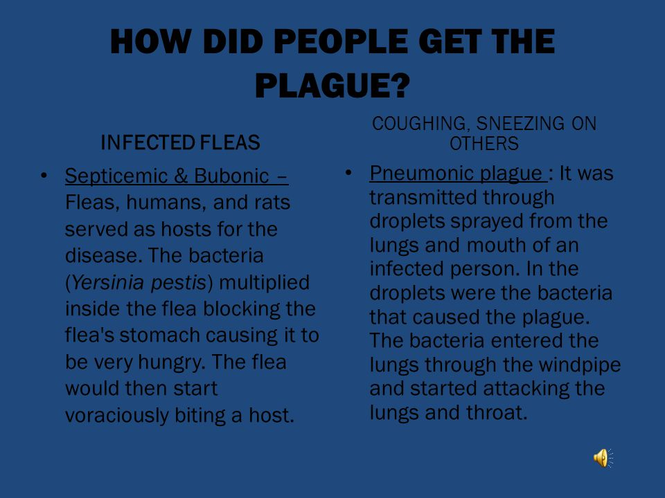 HOW DID PEOPLE GET THE PLAGUE
