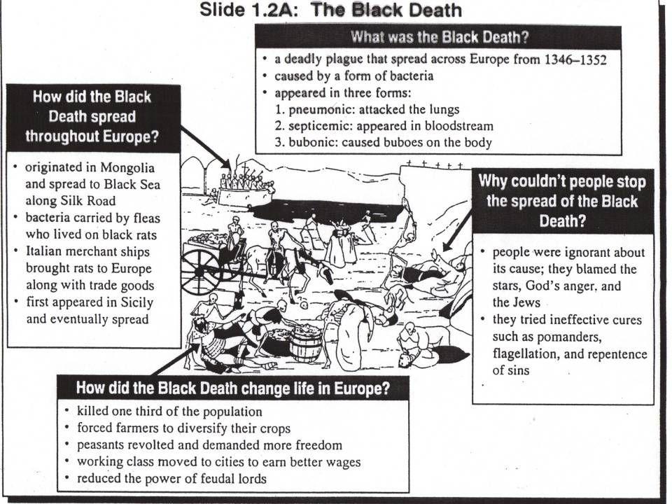 Graphic Organizer of the Black Death