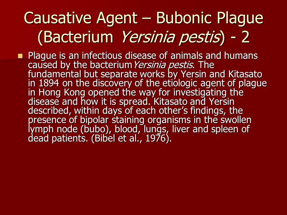 Causative Agent – Bubonic Plague (Bacterium Yersinia pestis) - 2