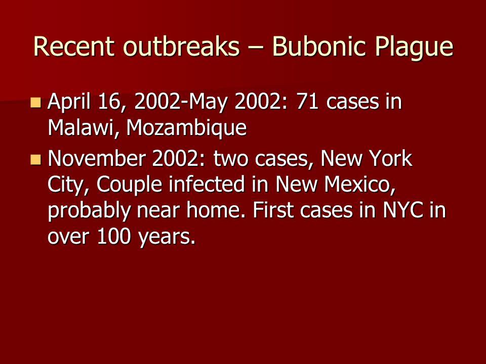Recent outbreaks – Bubonic Plague
