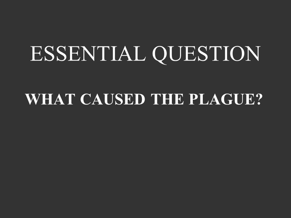 ESSENTIAL QUESTION WHAT CAUSED THE PLAGUE