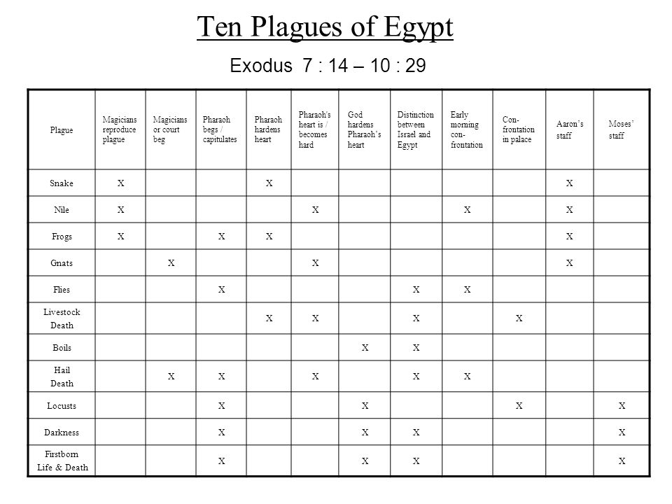Ten Plagues of Egypt Exodus 7 : 14 – 10 : 29 Snake X Nile Frogs Gnats