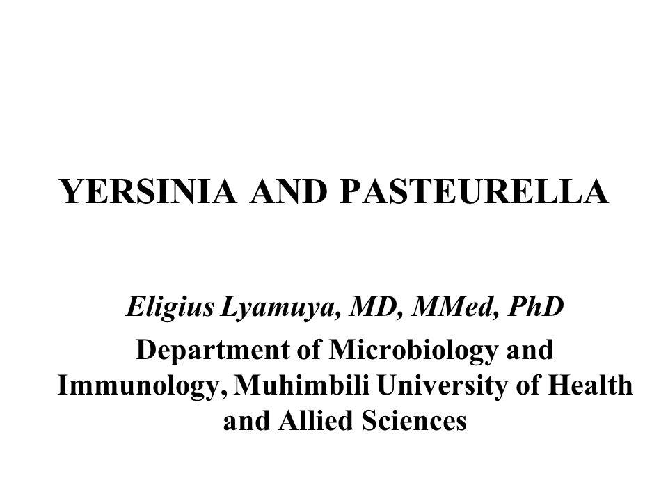 YERSINIA AND PASTEURELLA