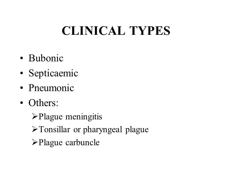 CLINICAL TYPES Bubonic Septicaemic Pneumonic Others: Plague meningitis