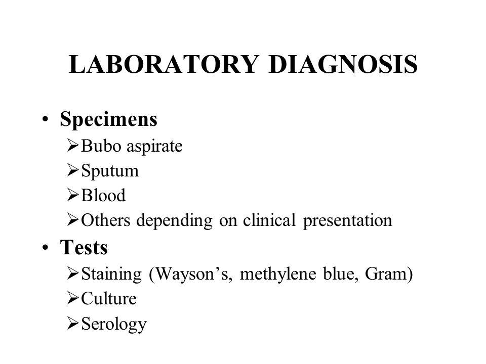 LABORATORY DIAGNOSIS Specimens Tests Bubo aspirate Sputum Blood