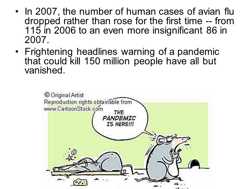 In 2007, the number of human cases of avian flu dropped rather than rose for the first time -- from 115 in 2006 to an even more insignificant 86 in 2007.