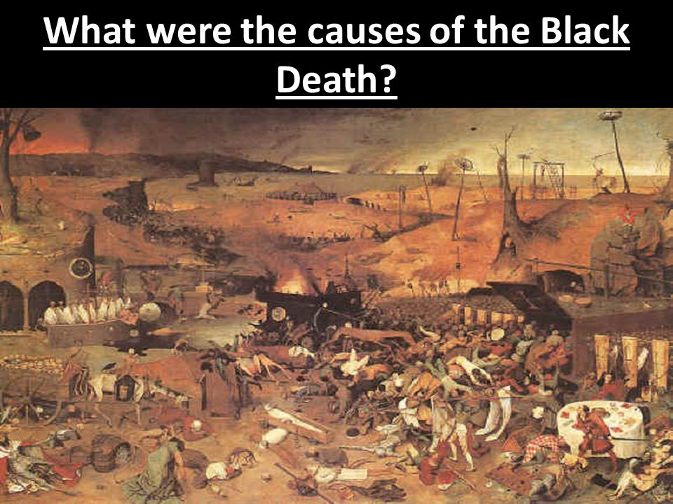 What were the causes of the Black Death