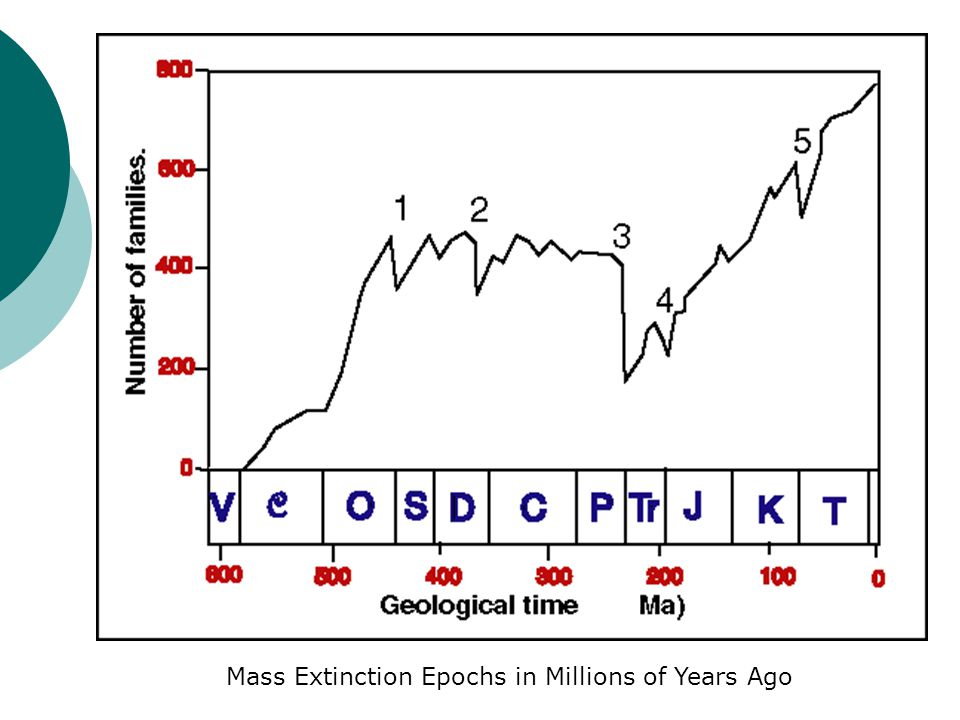 Mass Extinction Epochs in Millions of Years Ago