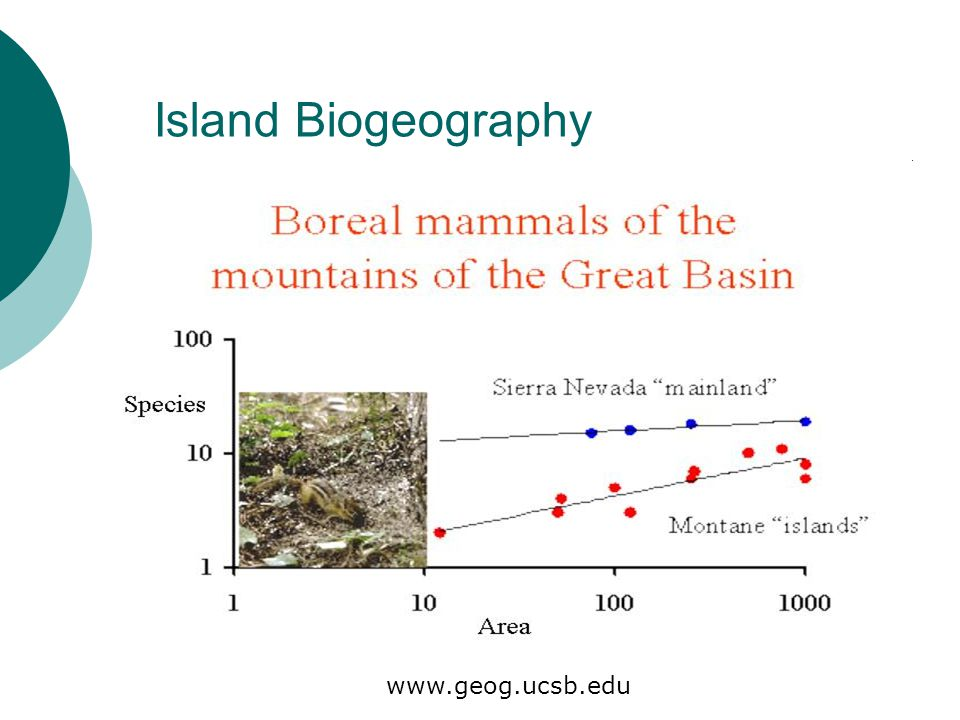 Island Biogeography www.geog.ucsb.edu