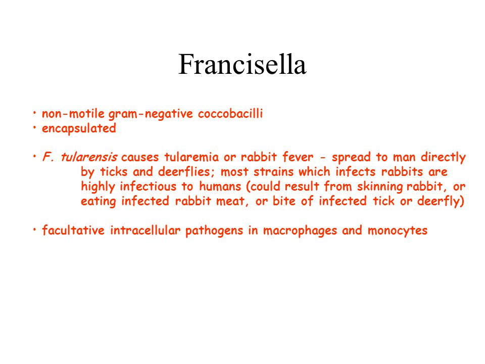 Francisella non-motile gram-negative coccobacilli encapsulated