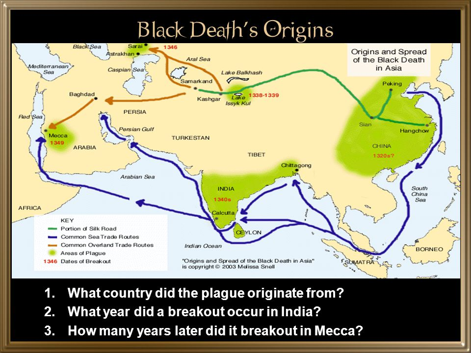 Black Death's Origins What country did the plague originate from