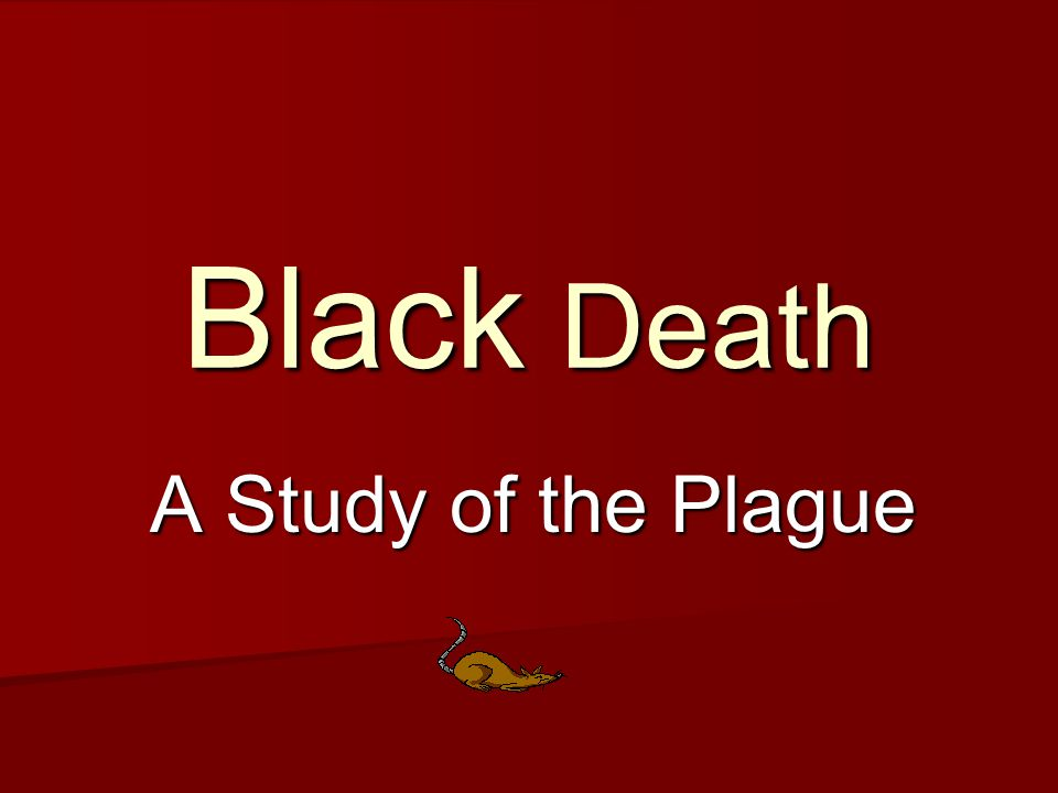 Black Death A Study of the Plague