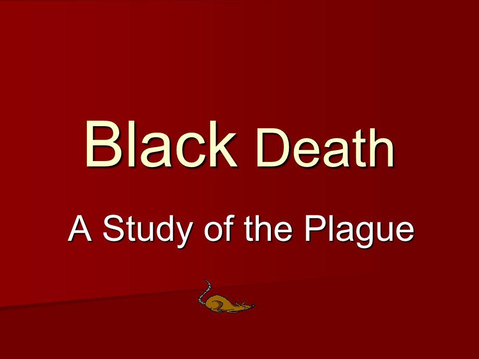 Black Death A Study of the Plague