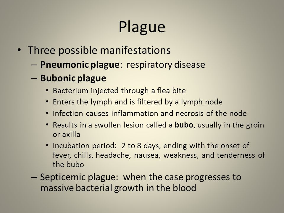 Plague Three possible manifestations