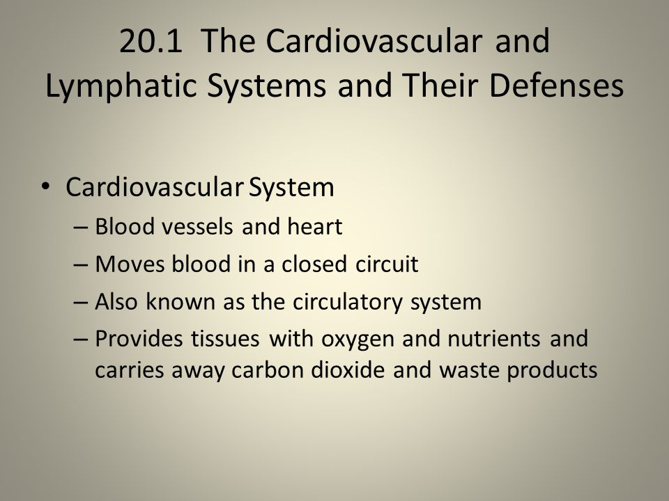 20.1 The Cardiovascular and Lymphatic Systems and Their Defenses