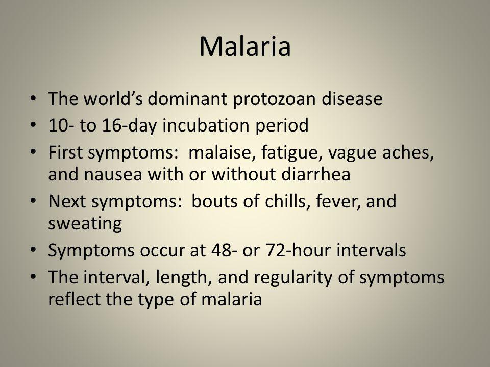 Malaria The world's dominant protozoan disease